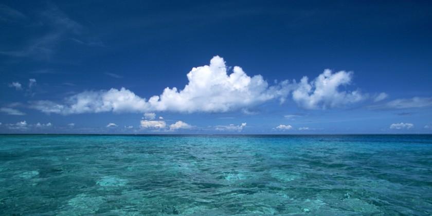 o-OCEAN-facebook.jpg